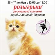 Магия кошек Freya 2013-11-16